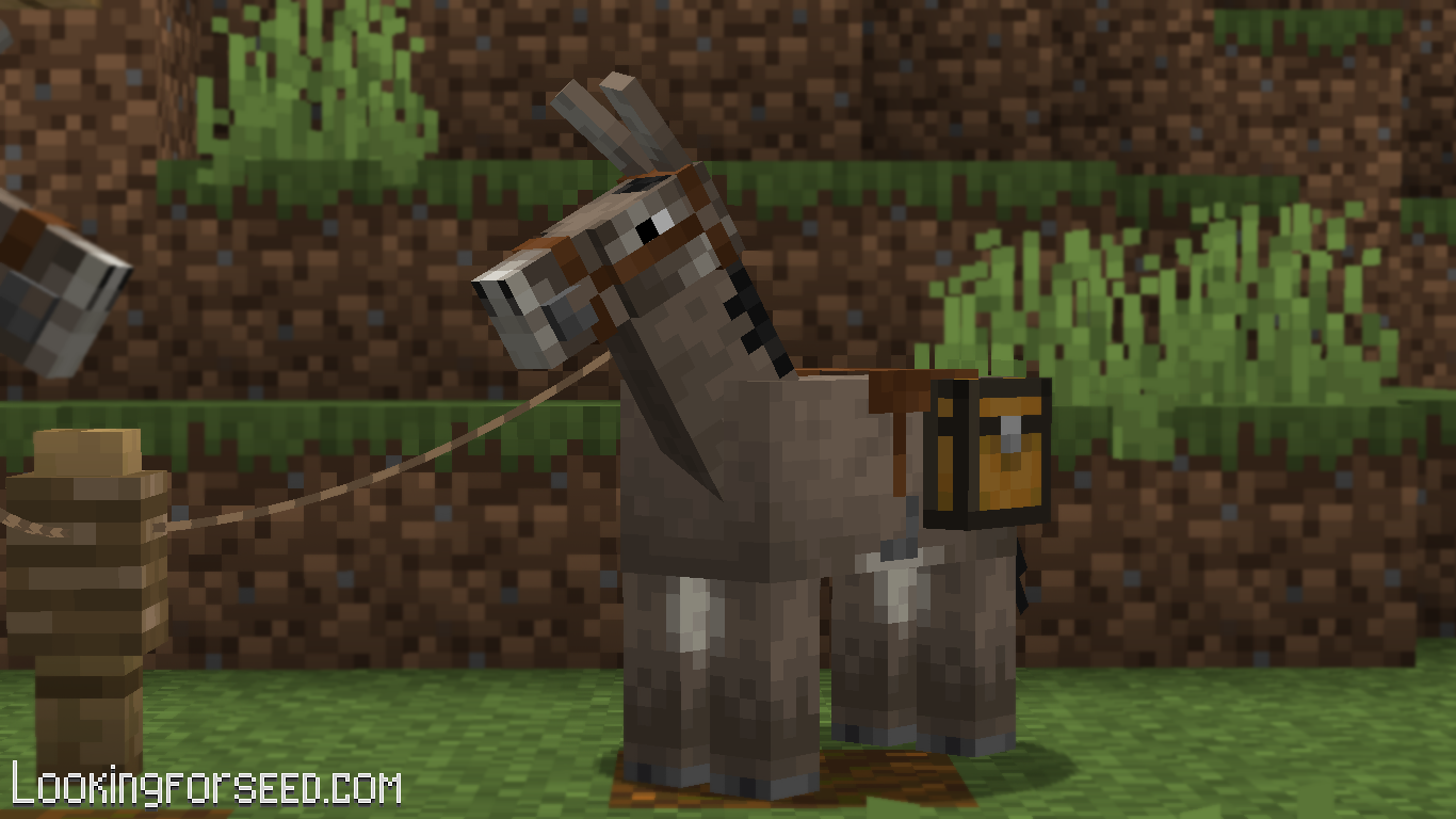 A Donkey equipped with Saddle and Chest, and tied to a Fence.