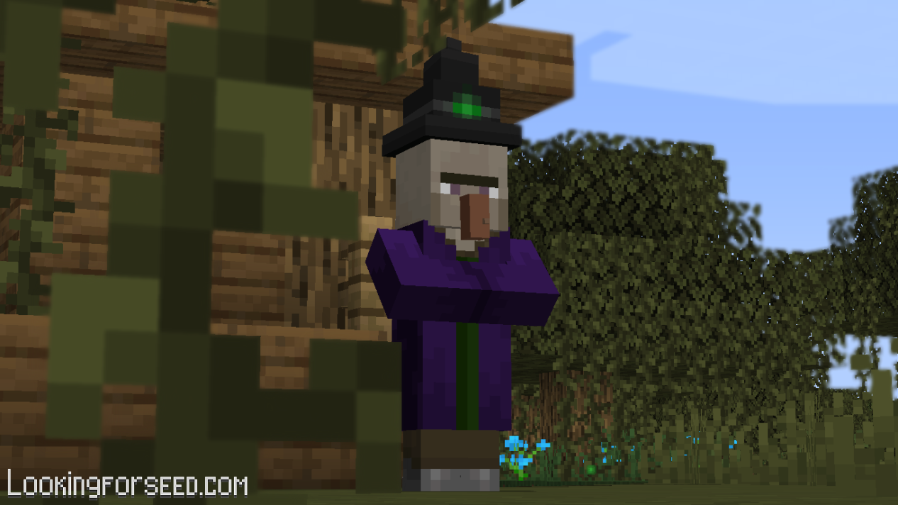 Witch Minecraft
