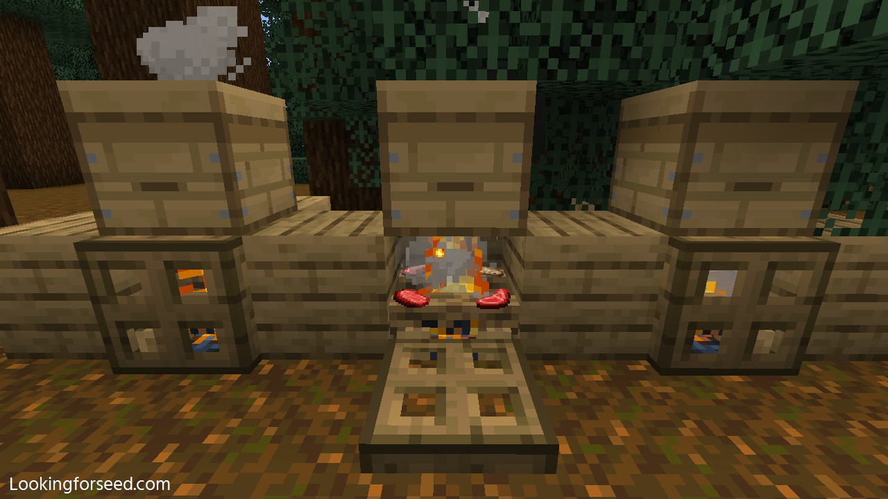 Cooking Food with Campfire